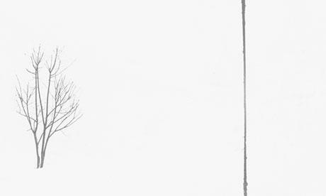 Geraldo de Barros, Untitled