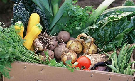 Box of organic vegetables