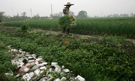 Pollution from toxin in Chinese farmland, Guangzhou, China