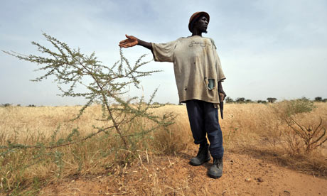 MDG : Burkina Faso : Desertification
