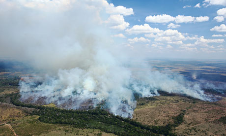 Deforestation In The Brazilian Amazon : fires set on pastures onto the forest  in Mato Grosso