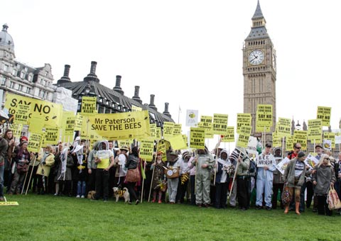 March of the Beekeepers to ban ban on bee harming pesticides., Westminster