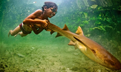 Marine boy: Enal with his pet shark. Photograph: James Morgan in the Guardian
