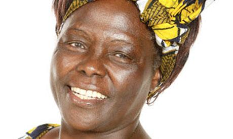 Wangari Maathai World News The Guardian
