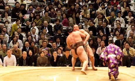 Hakuho and Harumafuji