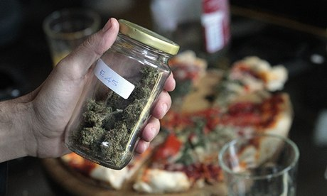 A marijuana sample at Uruguay's second cannabis cup in Montevideo
