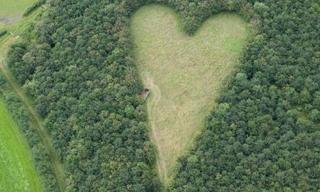 The giant heart formed with 6,000 oak trees that Winston Howes planted in memory of his late wife Janet. Photograph: Adam Gray/SWNS