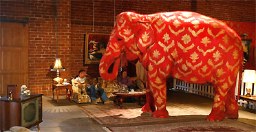 Banksys painted elephant is illegal say officials  UK