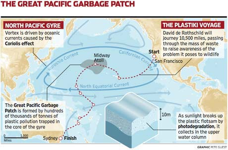 The plastic we dispose everyday ends its life in the oceans and in its creatures.