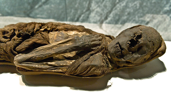 Mummies of the World: exhibition in California Science Center, Los  Angeles, USA