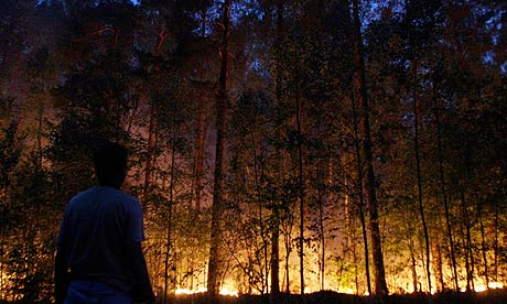 A Russian man watches a forest fire burn in Beloomut