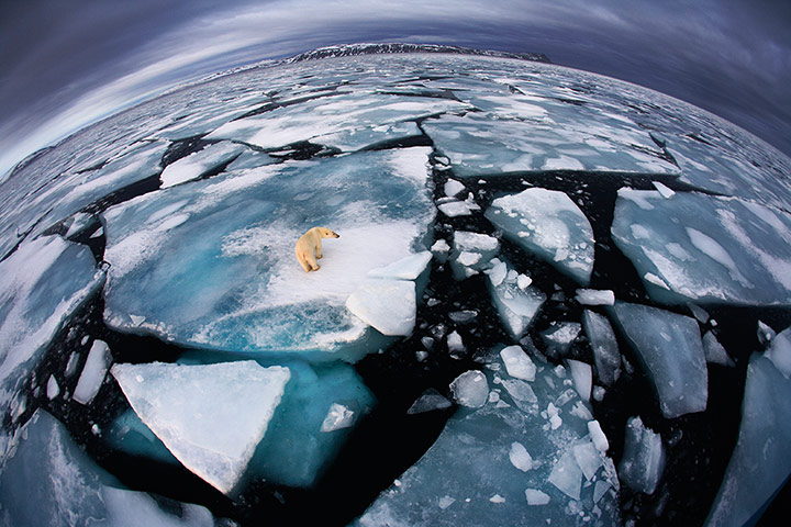 Veolia: Ice matters