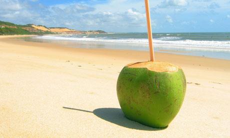 coconut,ashram,ayurved,health,
