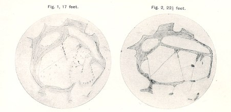 Drawings of the Martian surface by schoolboys in 1903.
