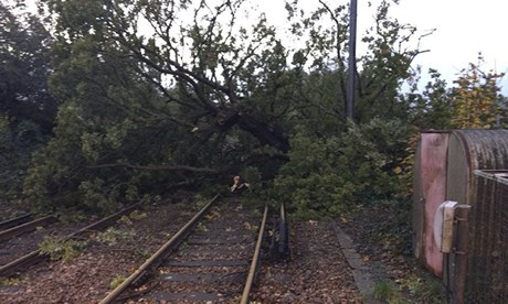 Fallen trees block a railway line at Keymer, West Sussex