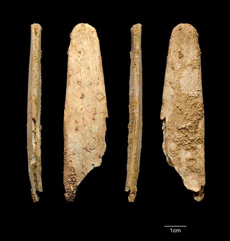 Neanderthal lissoir