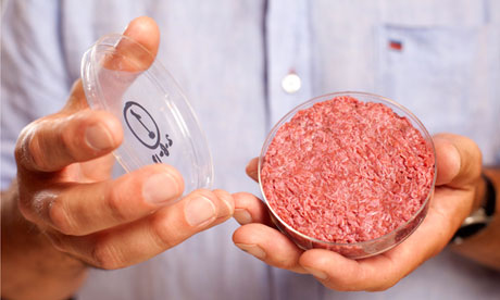 Lab-grown beef hamburger