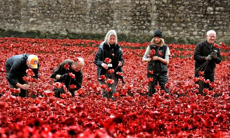 Volunteers remove poppies from the moat of the Tower of London, 16 December 12014.