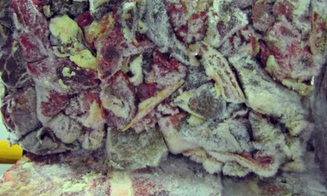 Ireland meat found