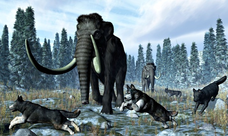 A pack of dire wolves and two mammoths