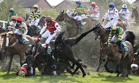 Wallpaper Falling Off Ceiling Care About Horses Then You Should Ban Grand National