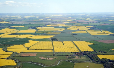 Fields of Oil Seed Rape, from the air, Lincolnshire, April 2011.