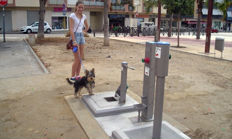 Dog toilet in El Vendrell, Spain
