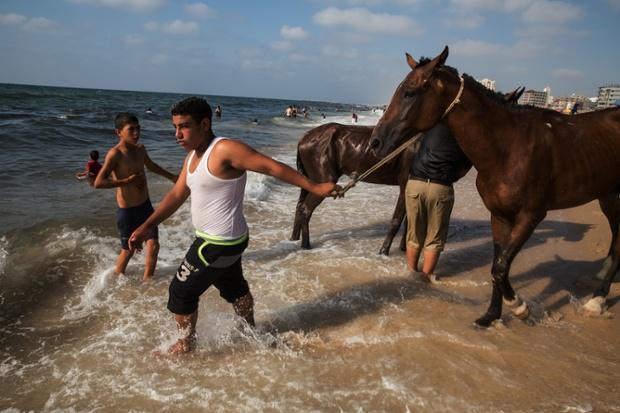 Gazans take their horses to the sea for a wash as other people relax on the beach.