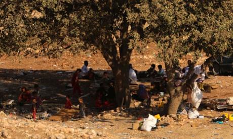 yazidi on sinjar