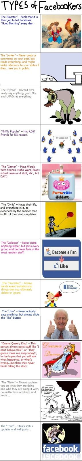 Vilken facebooktyp är du?