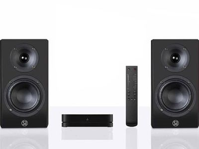 Used System Audio Legend 5 silverback Bookshelf speakers for Sale   HifiShark.com