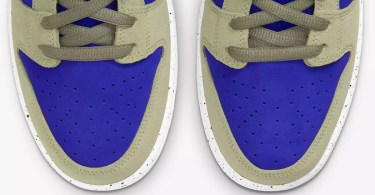 10 of the Best 2021 Nike Dunk Colorways