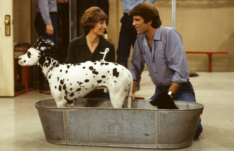 Image result for penny marshall and animals