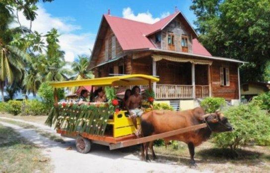 Cele mai ciudate mijloace de transport din lume