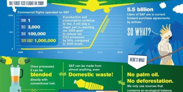 Infographic: IATA