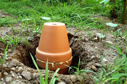 1000 Ideas About Irrigation Valve On Pinterest Irrigation Drip