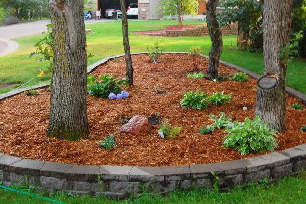 much mulch 's