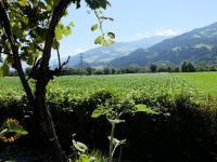 Kaufen Haus - Ferienhaus, Innsbruck - Land-Baumkirchen