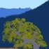 Blue Oak Ranch Reserve Biodiversity icon