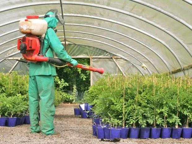 web-pesticides-rex.jpg