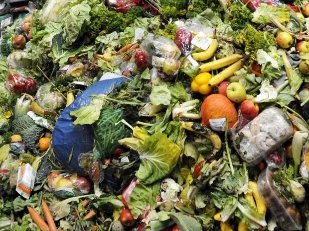 web-food-waste-getty.jpg