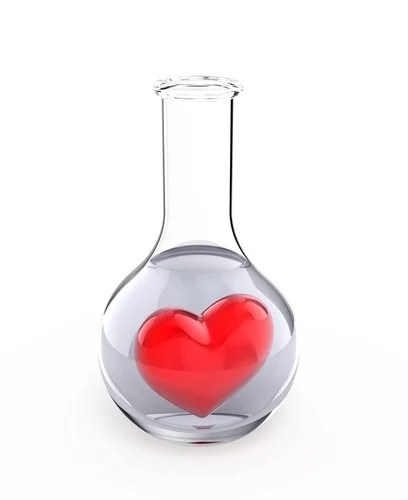 Image result for science and love images