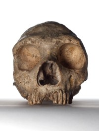 Neanderthals' large eyes led to their downfall, says study ...