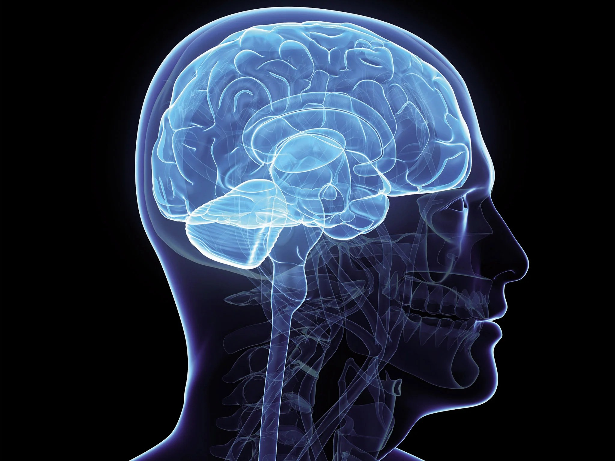 Is The Right Or Left Side Of Your Brain More Dominant Take This Quiz To Find Out