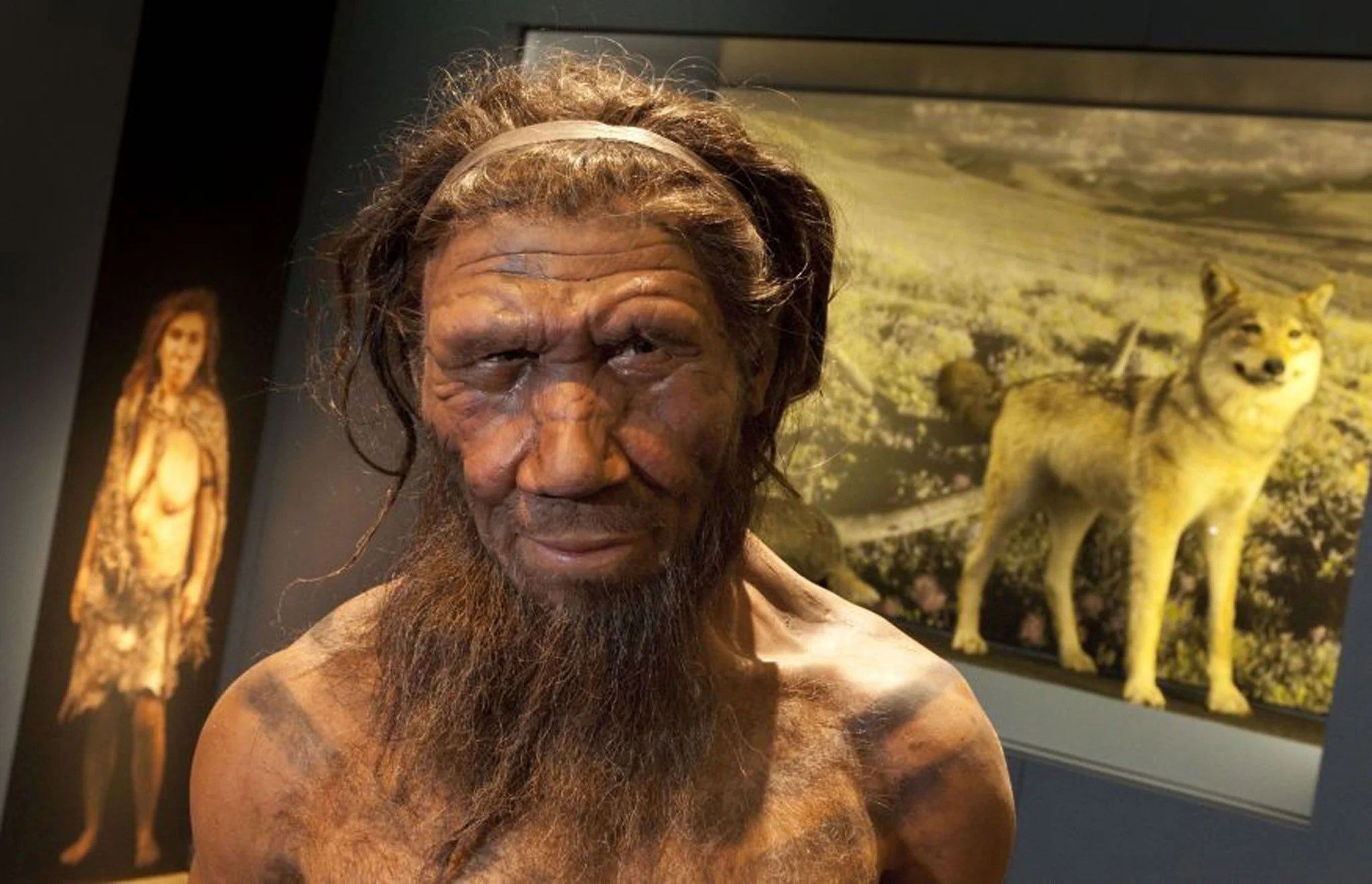 Some Neanderthals Were Vegetarians Who Used Natural Forms Of Penicillin And Aspirin As Medicine
