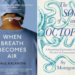 Two Seater Chairs Uk New England Patriots Chair 9 Best Popular Science Books | The Independent