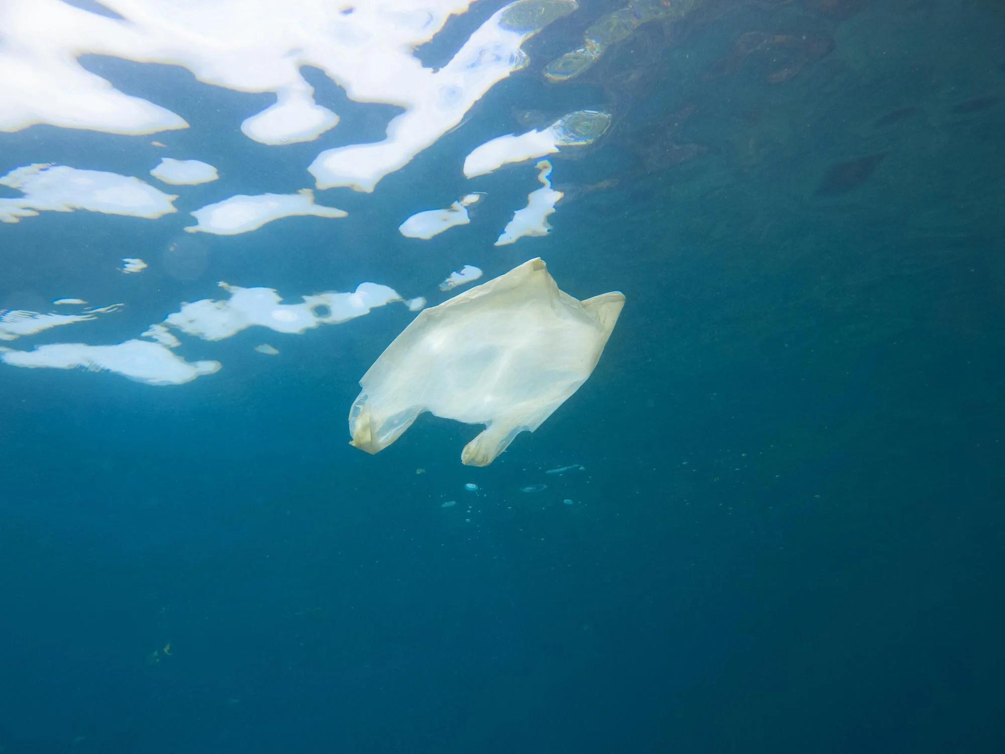 plastic bag among 3