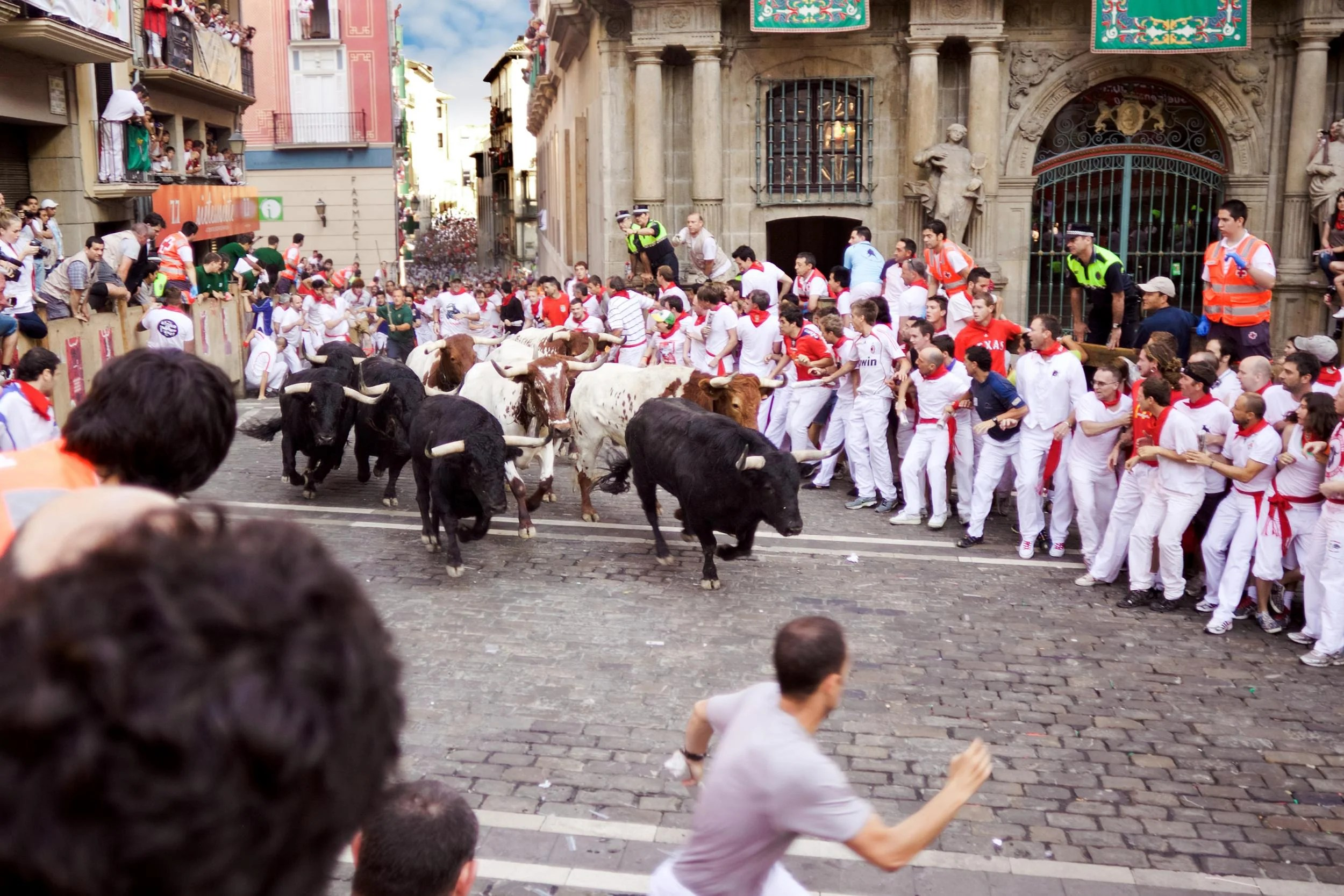 Tourists concerned about animal welfare should reconsider their involvement in the annual Pamplona bull run