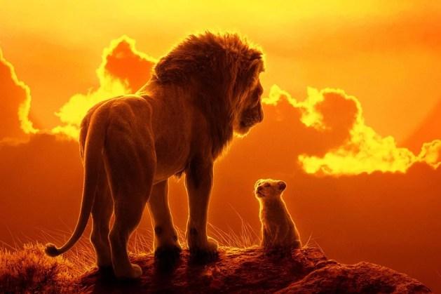 Résultat en image du roi lion