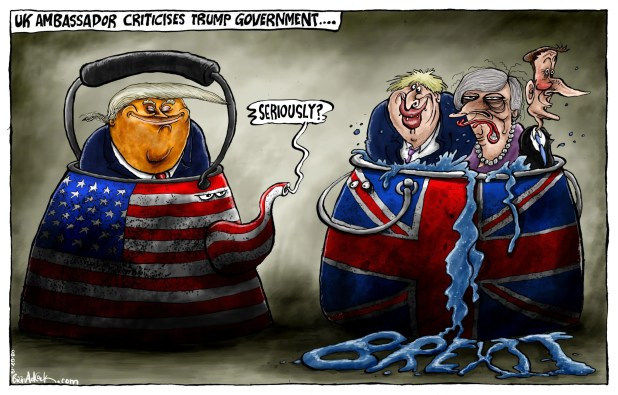 Image result for cartoon: britain ambassador